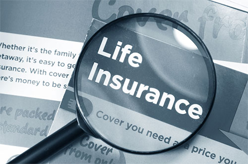 Individual Life Insurance Quotes Amusing Term Life Insurance  Whole Life Insurance  Individual Life Insurance